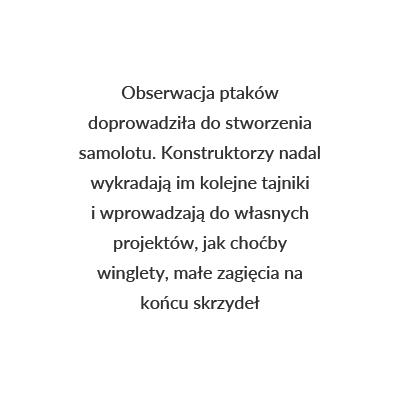 marzenie-dedala-square-b